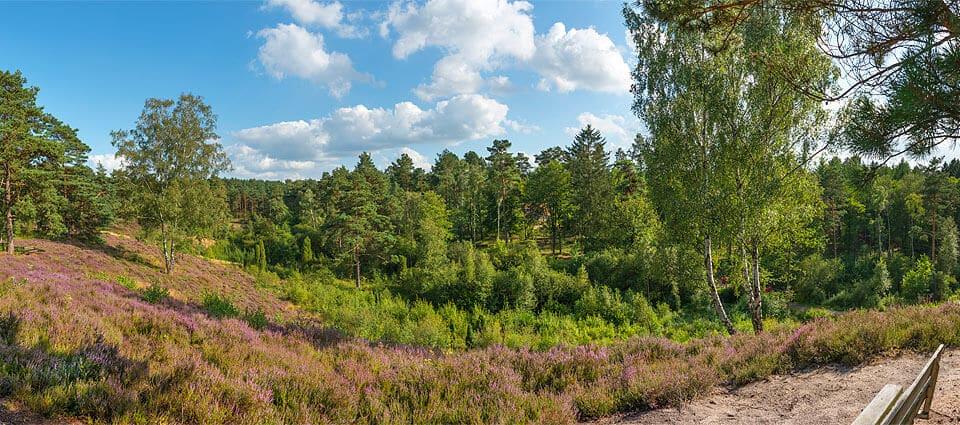 spoektal-panorama1-960_0